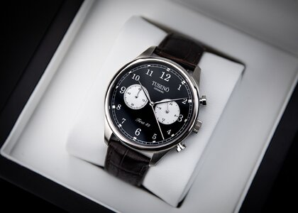 First_42_silver_black_panda_tuseno-3.jpg